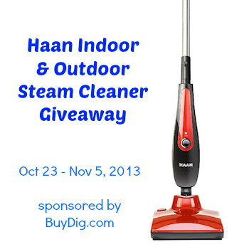 Haan Steam Cleaner Giveaway