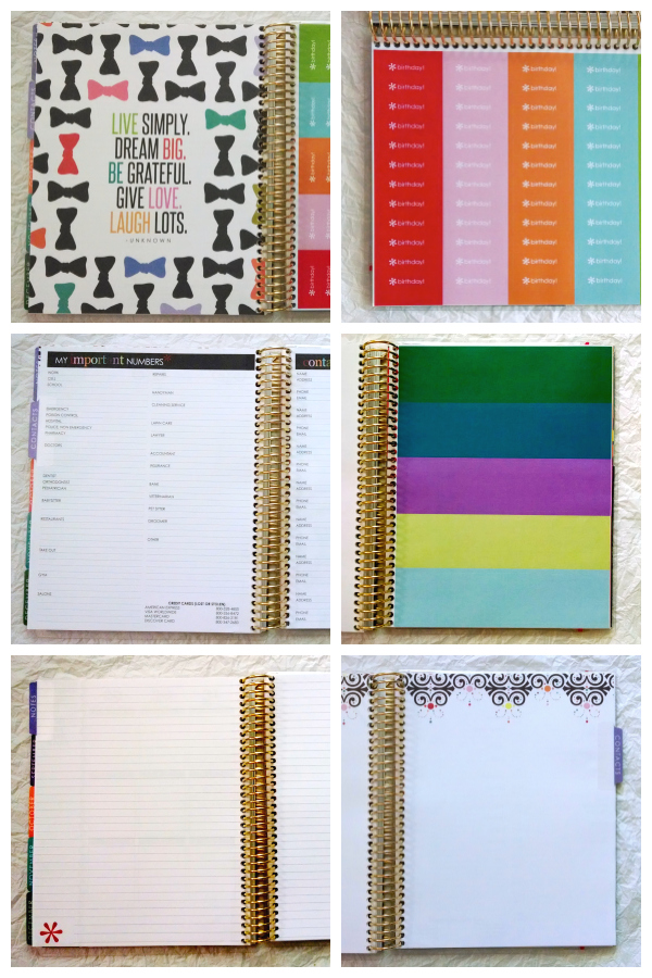 Erin COndren Life Planner pages